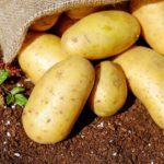 Kartoffel Essen Mit Schale