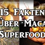 Ist Maca ein Superfood