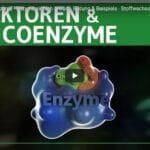 Was sind Enzyme
